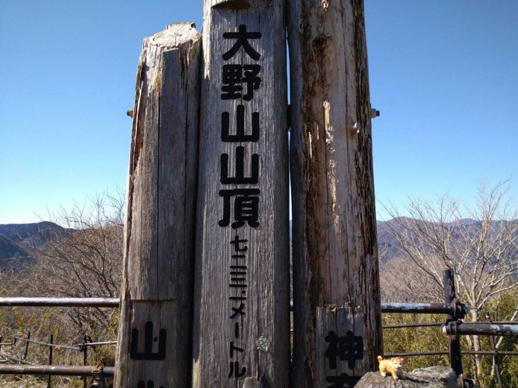 大野山山頂にたぬ吉到着