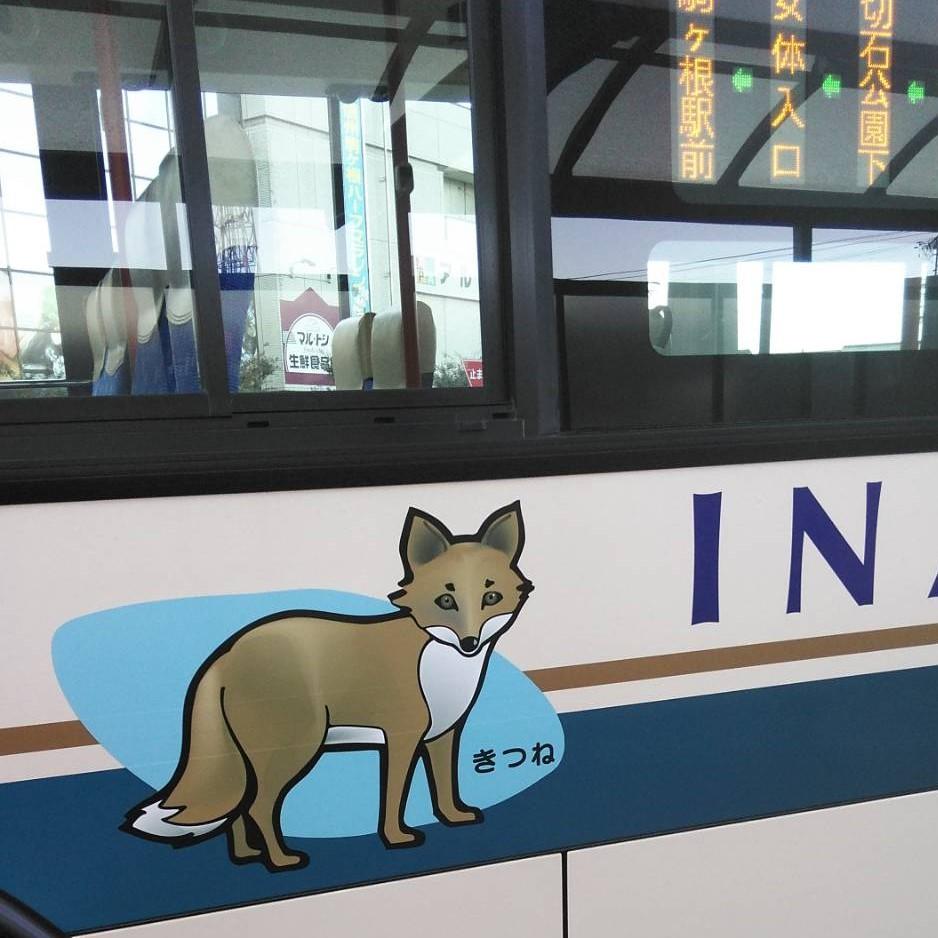 帰りのバス。きつねかわいいきつね