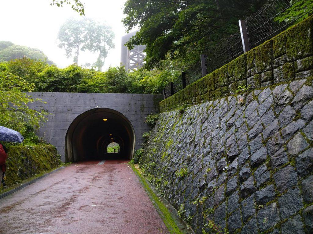 トンネルがあります。ちょっとドキドキしますが通ります