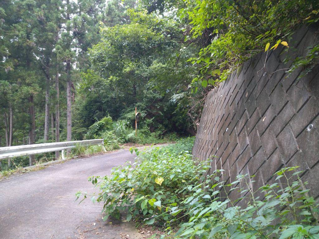 道路を横切り、ガードレールのほうへ向かっていくと再び登山道に入ります