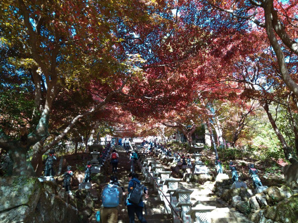 阿夫利神社下社へ向かう階段です。すでに体力があやしい