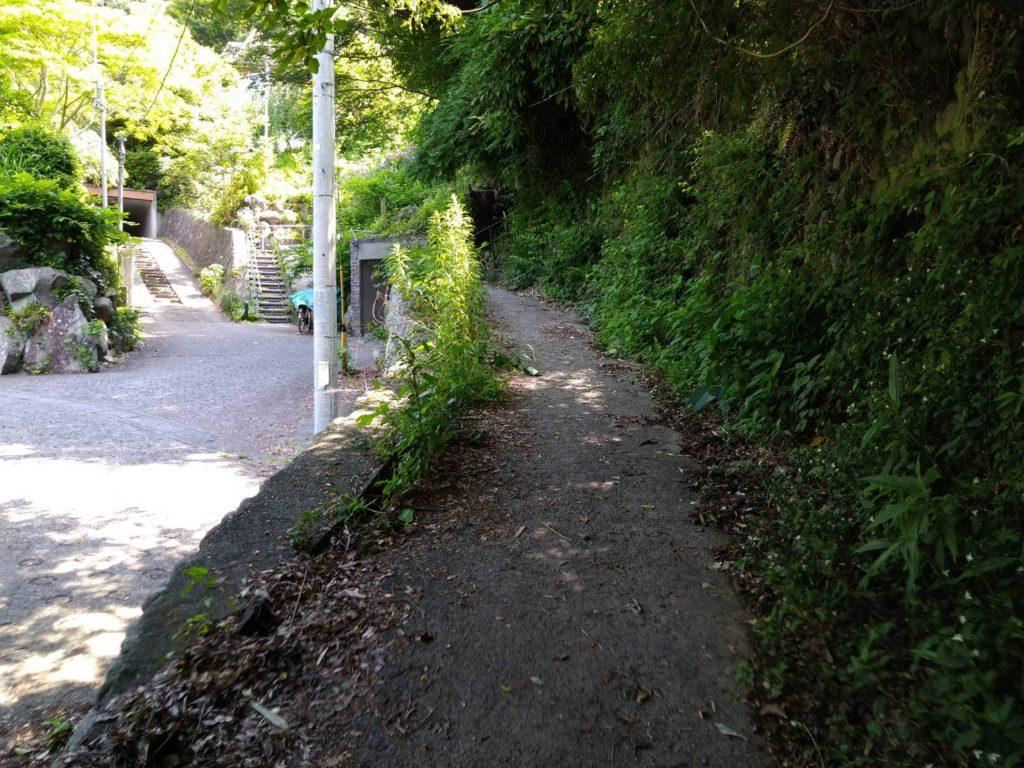 この細い右手の道から登山道に入ります